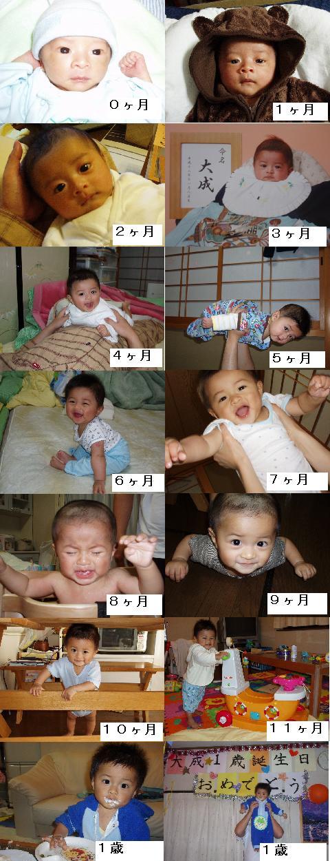Taisei1sai2_3